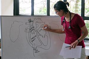 Public health_300x200