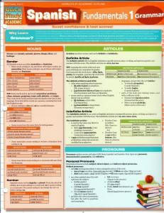 Spanish Fundamentals 1- Basic Spanish Grammar