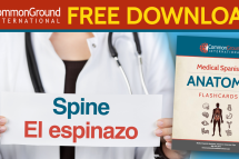 Free medical Spanish terminology: Parts of the Body in Spanish flashcards