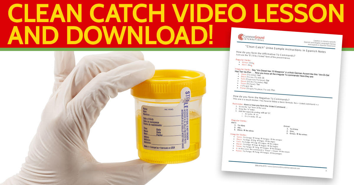 How to give clean catch urine sample instructions in Spanish
