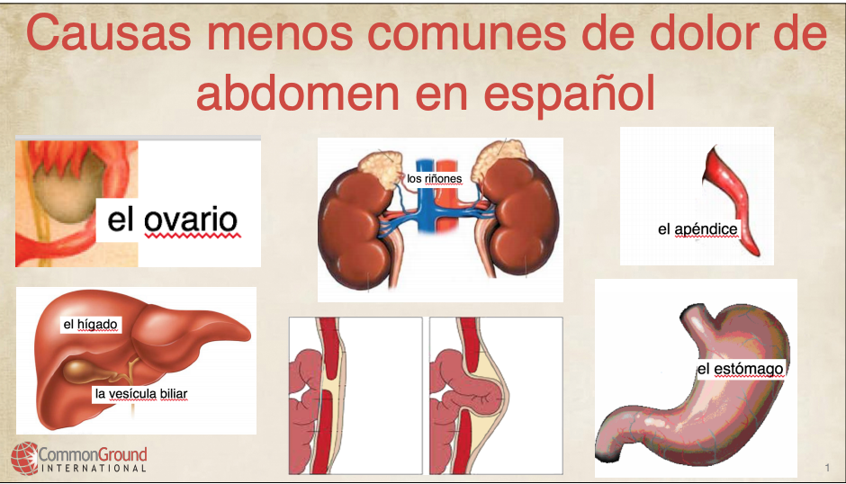 Less common causes of abdominal pain in Spanish